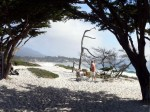 Older picture taken with an old Panasonic Lumix - Carmel Beach - Mike Hope