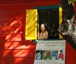 La Boca Window - Nice Girl - Buenos Aires - Mike Hope