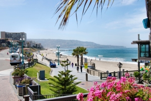 Cecily Lee - Redondo Beach Home Sales