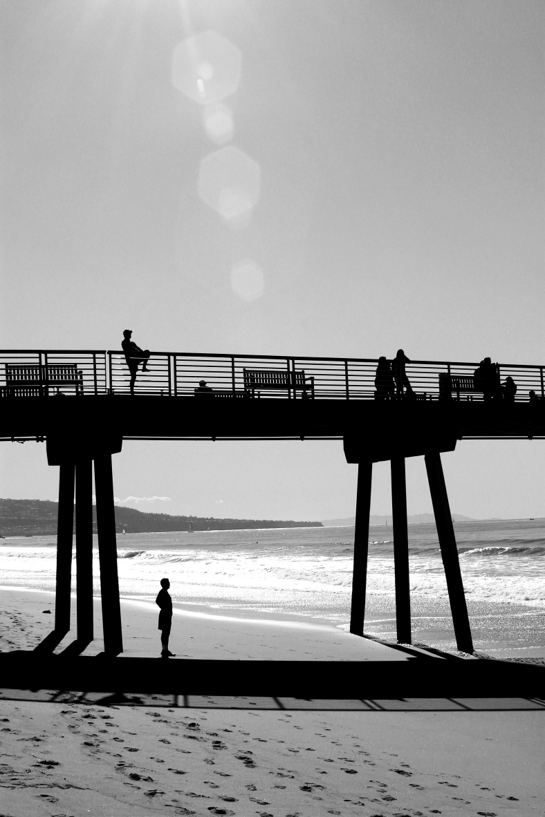 Under the Pier - Hermosa Beach
