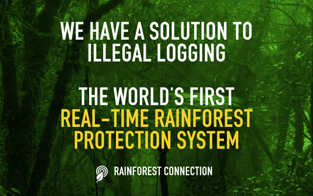 Rainforest Connection - Kickstarter