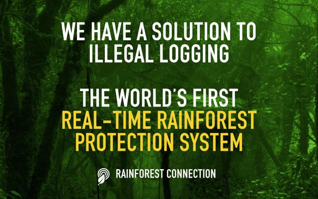Rainforest Connection - Kickstarter