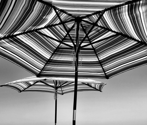 Umbrellas in the Sun