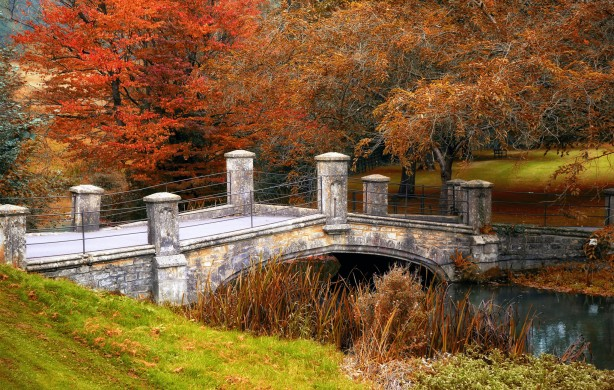 The Bridge to Autumn by Mike-Hope